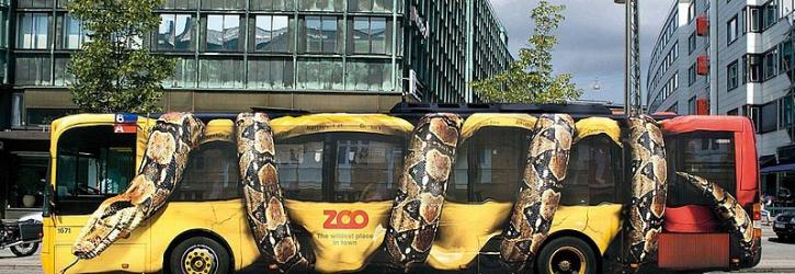 Виды рекламы на транспорте